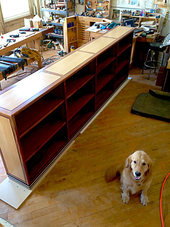 bookcase with dog